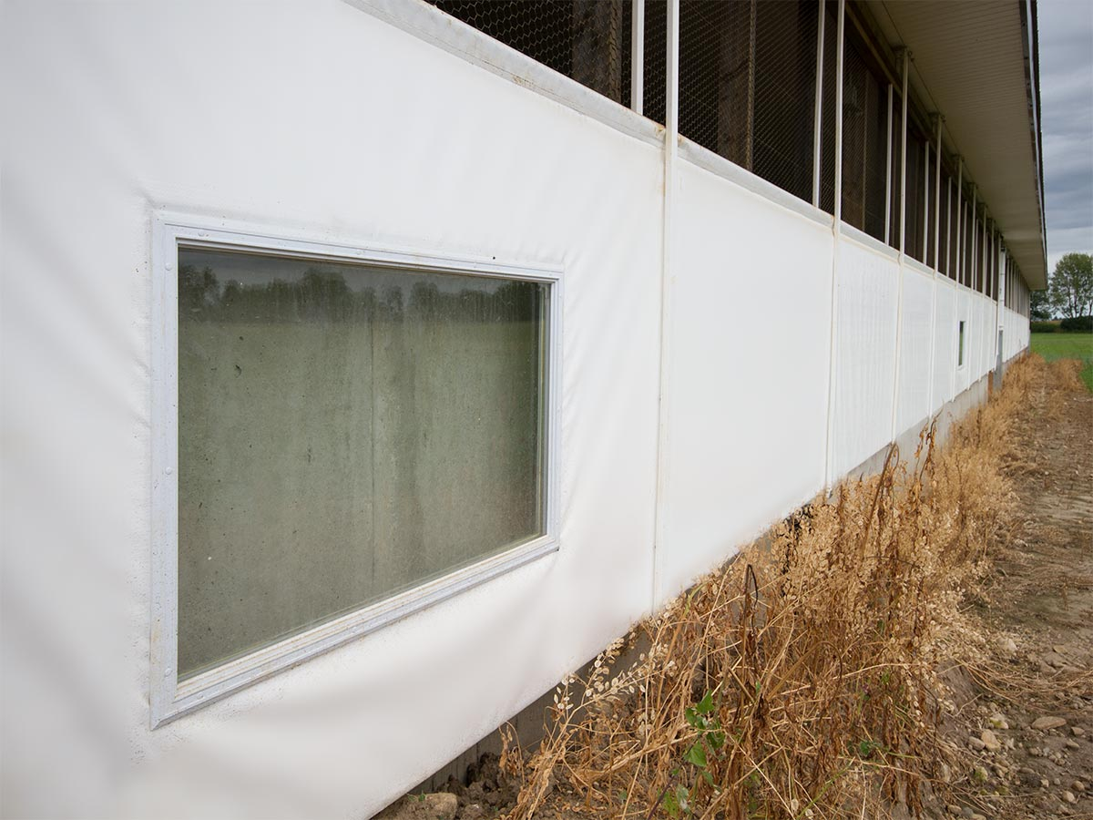 Livestock ventilation curtain system with window